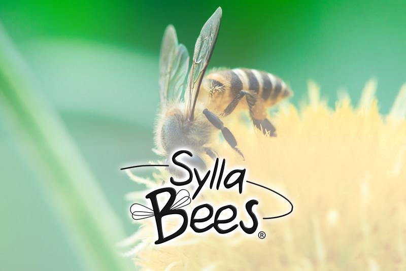 Sylla-Bees Produkte